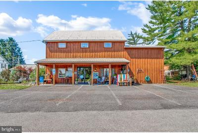 Adams County Commercial For Sale: 202 E Main Street
