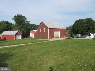 Adams County Single Family Home For Sale: 886 Pine Grove Road