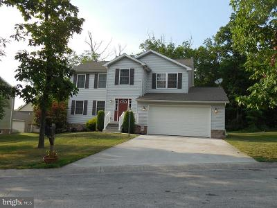 Gettysburg Single Family Home For Sale: 240 Twin Lakes Drive