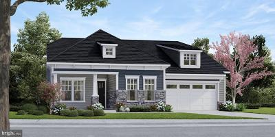 Adams County Single Family Home For Sale: Tbd Lively Stream Way #HAVEN FL