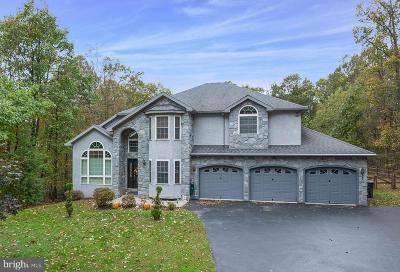 Birdsboro Single Family Home For Sale: 1934 Cocalico Road