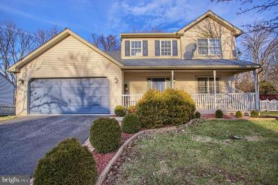 Birdsboro Single Family Home For Sale: 6081 Long Pond Drive