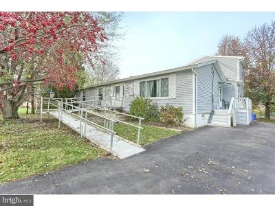 Sinking Spring Single Family Home For Sale: 19 Maywood Avenue