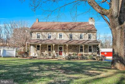 Berks County Single Family Home For Sale: 58 Township Road