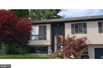 Birdsboro Single Family Home For Sale: 1251 Lehigh Avenue
