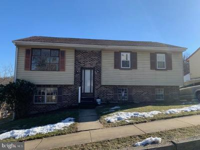 Mohnton Single Family Home For Sale: 102 Pear Street