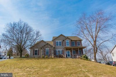 Single Family Home For Sale: 137 Roja Lane