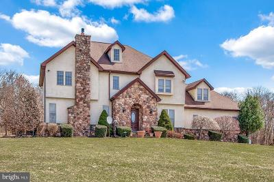 Single Family Home For Sale: 255 Kulps Road