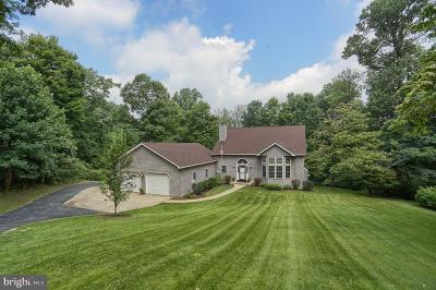 Single Family Home For Sale: 449 Texter Mountain Road