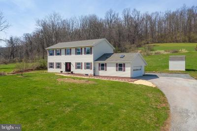 Birdsboro Single Family Home For Sale: 379 Furnace Road