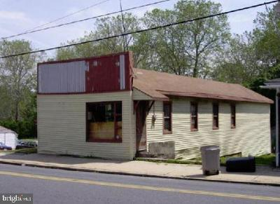 Mohnton Residential Lots & Land For Sale: 210 E Wyomissing Avenue