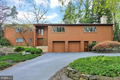 Wyomissing Single Family Home For Sale: 520 Campus Road