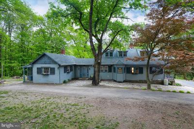 Birdsboro Single Family Home For Sale: 265 Ridgeway Road