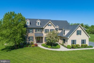 Single Family Home For Sale: 151 Meadow View Drive