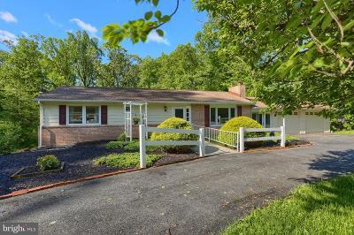 Single Family Home For Sale: 1358 Chestnut Street