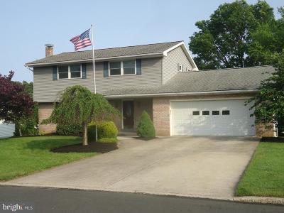 Single Family Home For Sale: 415 Raymond Avenue