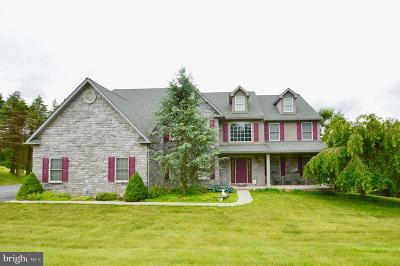 Birdsboro Single Family Home For Sale: 231 Spruce Drive