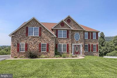 Douglassville Single Family Home For Sale: 103 Farm View Court