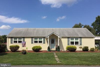 Single Family Home For Sale: 41 Grandview Avenue