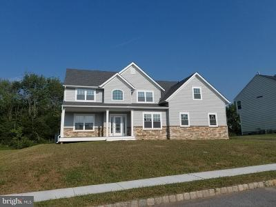 Douglassville Single Family Home For Sale: 141 Fair Meadow Drive