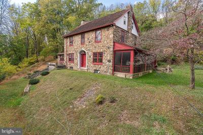 Single Family Home For Sale: 181 Lewis