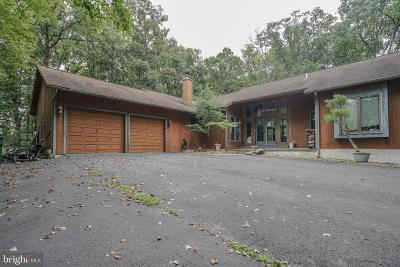 Bucks County Single Family Home For Sale: 252 Park Dr W