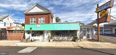 Bucks County Commercial For Sale: 133 N Main Street
