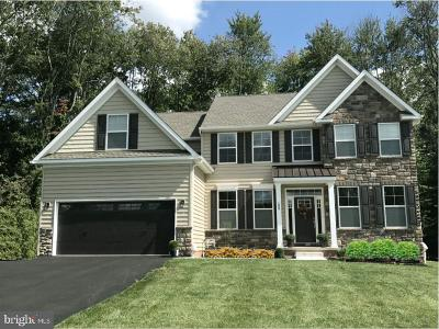 Bucks County Single Family Home For Sale: 2434 Street Rd