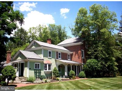 Bucks County Single Family Home For Sale: 3587 Old Windy Bush Road