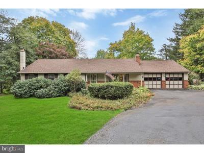Bucks County Single Family Home For Sale: 566 Swamp Road