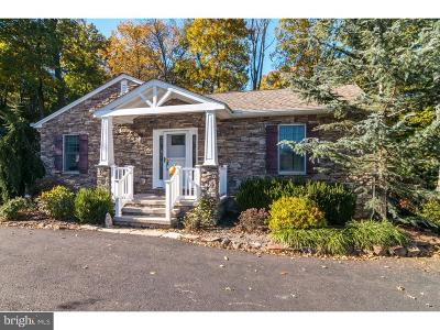 Doylestown Single Family Home For Sale: 4110 Fell Road