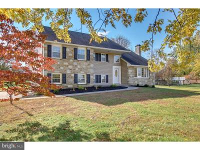 Chalfont Single Family Home For Sale: 3766 Pickertown Road