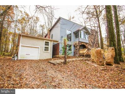Single Family Home For Sale: 694 State Road