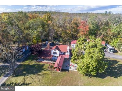 Bucks County Farm For Sale: 29 Boulder Road