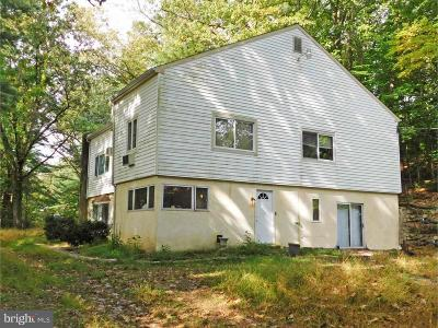 Bucks County Single Family Home For Sale: 444 W Bristol Road