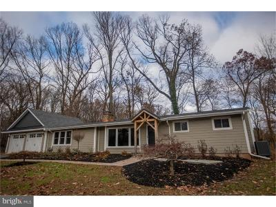 Doylestown Single Family Home For Sale: 659 Limekiln Road