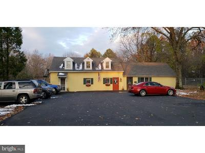 Bucks County Commercial For Sale: 1005 Almshouse Road