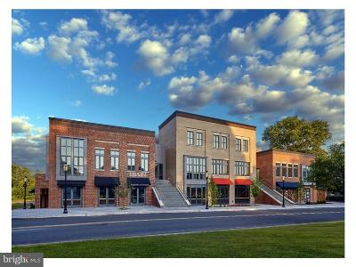 Bucks County Condo For Sale: 202 S State Street #3D