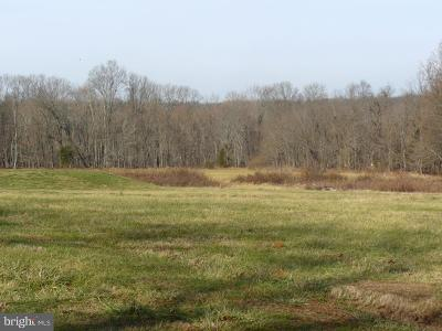 Bucks County Residential Lots & Land For Sale: 7157 Stump Road