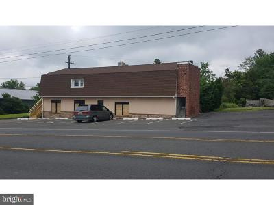 Bucks County Commercial For Sale: 1119 Bethlehem Pike