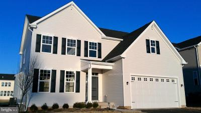 Bucks County Single Family Home For Sale: 303 Conner Lane