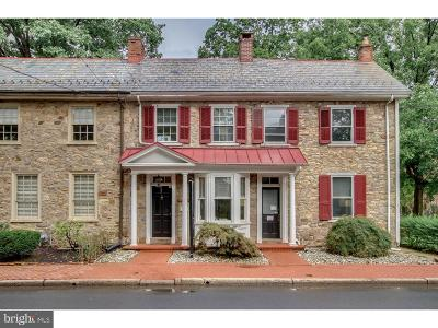 Doylestown Single Family Home For Sale: 113 E Court Street