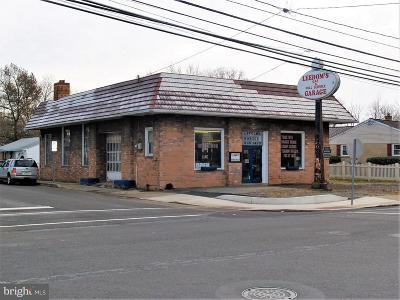 Bucks County Commercial For Sale: 197 N Hellertown Avenue