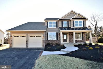 Bucks County Single Family Home For Sale: 420 New Road #LOT 3