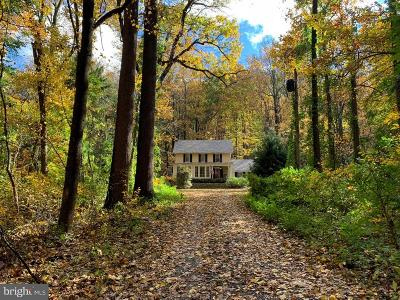 New Hope Single Family Home For Sale: 4627 Upper Mountain Road