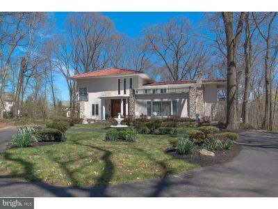 Bucks County Single Family Home For Sale: 20 Skoures Lane