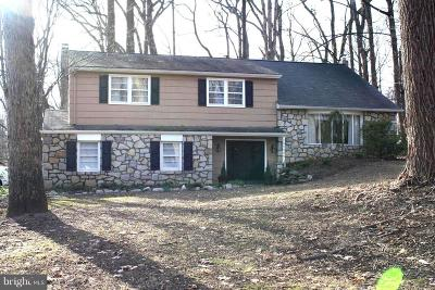 Doylestown Single Family Home For Sale: 3934 Street Road