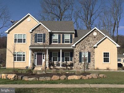 Bucks County Single Family Home For Sale: 2436 Street Road