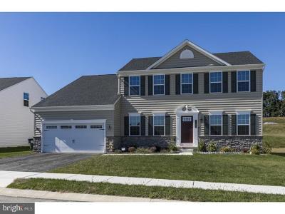 Bucks County Single Family Home For Sale: 11062 Domino Lane