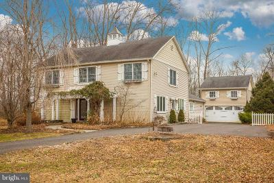 Bucks County Single Family Home For Sale: 4984 Point Pleasant Pike